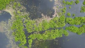 Landskap sjö Tulovo stock video