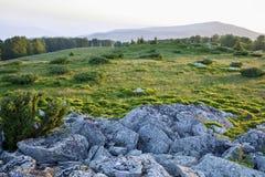 Landskap solig gryning i ett fält Arkivbild