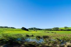 Landskap som går till Cavalleria Royaltyfri Bild