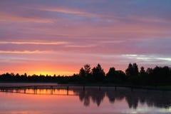 Landskap sommar, morgon, rosa gryning på sjön arkivbild
