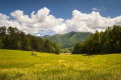 Landskap stora rökiga berg för den Cades coven som nationalparken fjädrar sceniskt Royaltyfria Foton