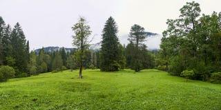 Landskap sydvästliga Bayern Tyskland Fotografering för Bildbyråer