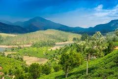 Landskap teakolonier, berg och floden i Indien Arkivbild