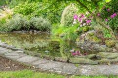 Landskap trädgårds- plats med det sten kantade damm Arkivfoton