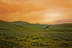 Landskap - Växt-Berg-färgrik himmel arkivbild