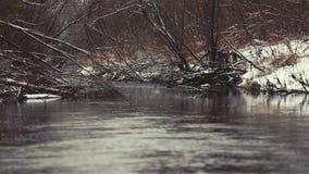 Landskap vinterskogen och tysta under vinterfloden