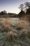 Landskap vintersurnise av floden och frostiga fält Arkivbild