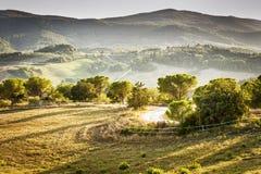 Landskap Volterra Royaltyfri Bild
