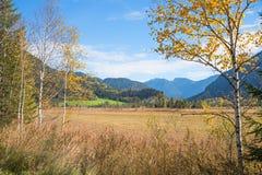 Landskap Weidmoos Ettal för hed för naturreserv i höst fotografering för bildbyråer