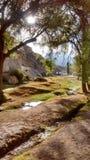 Landskap Yura Peru Royaltyfri Bild