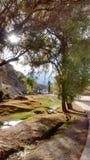 Landskap Yura Peru Arkivfoto