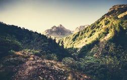 Landskapberg och skog i Abchazien Royaltyfri Foto