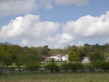 Landskapbild av det stora vita huset. Suffolkfår i förgrund - Suffolk Arkivbild