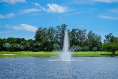 Landskapdamm med en springbrunn och breda gröna gräsmattor Fotografering för Bildbyråer