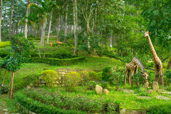 Landskapdesignen av kopplar av den tropiska trädgården Arkivbilder