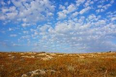 Landskape d'été Images libres de droits