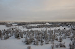 Landskape del invierno con el bosque en nieve en la puesta del sol de la tarde north Imagen de archivo libre de regalías
