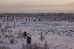Landskape del invierno con el bosque en nieve en la puesta del sol de la tarde north Fotografía de archivo libre de regalías