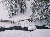 Landskape delle precipitazioni nevose della montagna Immagine Stock