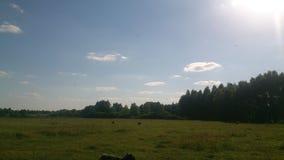 Landskapet Royaltyfri Bild