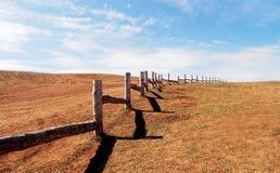 Landskapet av betar för nötkreatur, trästaket i prärien, blå himmel med moln arkivbild