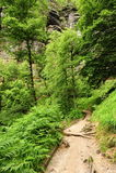 Landskapet av bohemmet Schweiz Arkivfoton