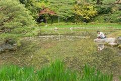 Landskapet av dammet i japanskt arbeta i trädgården Royaltyfria Foton