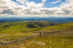 Landskapet av den gröna dalen översvämmade med ljus med berg, cov royaltyfri fotografi