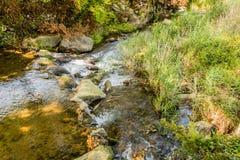 Landskapet av den lilla strömmen i lantlig skogsmark parkerar Royaltyfria Bilder