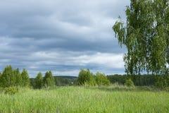 Landskapet av den ryska naturen arkivbilder