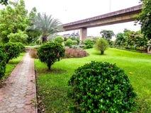 Landskapet av härliga blommor och brunnen bevarade gräs under den över huvudet bron längs vägen för den internationella flygplats Arkivbild