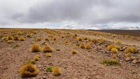 Landskapet av högländerna mellan Chile och Bolivia royaltyfria foton