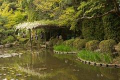 Landskapet av japanträdgården nära den Heian relikskrin Arkivbilder