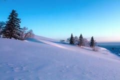 Landskapet av is och snövärlden Fotografering för Bildbyråer
