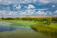 Landskapet av Taihu sjön arkivfoto