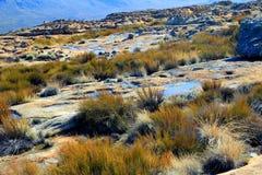 Landskapet av wolfberg knäcker i Cederbergen, Sydafrika. Arkivbild