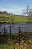 Landskapet Chatsworth parkerar, nrfloden Derwent, det maximala området, Derbyshire, fotografering för bildbyråer