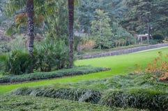 Landskapet i ett härligt exotiskt parkerar Royaltyfri Bild