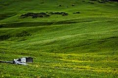 Landskapet i västra Sichuan Arkivfoto