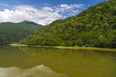 Landskapet med den Olt floden i Rumänien omgav vid skogen och mou Arkivfoton