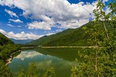 Landskapet med den Olt floden i Rumänien omgav vid skogen och mou Royaltyfri Foto