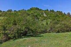 Landskapet med gröna kullar near byn av Fotinovo i det Rhodopes berget, Bulgarien Arkivfoto