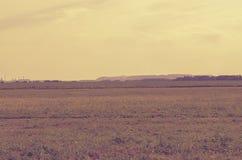 Landskapet med långväga berg och saltar växter i Soligorsk i Republiken Vitryssland Fotografering för Bildbyråer