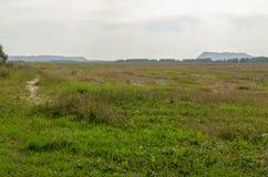 Landskapet med långväga berg och saltar växter i Soligorsk i Republiken Vitryssland Arkivbilder