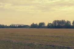 Landskapet med långväga berg och saltar växter i Soligorsk i Republiken Vitryssland Arkivbild