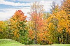 Landskapet med ljus höst färgade träd i parkera fotografering för bildbyråer