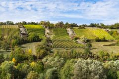 Landskapet med vingården längs populairrutten i Tyskland, kallade Romantische Strasse, Wein Strasse royaltyfria foton