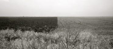 Landskapet - naturlig kontrast arkivfoto