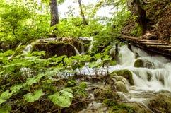 Landskapet på Plitvicka sjöar parkerar arkivbilder