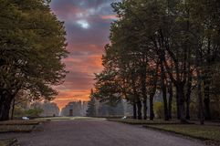Landskapet parkerar i Pavlovsk Den kalla gryningen royaltyfria foton